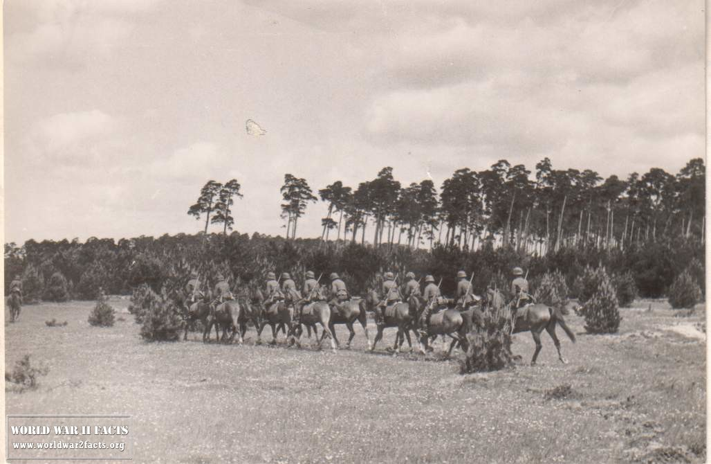 The Overlooked German Cavalry of WW2
